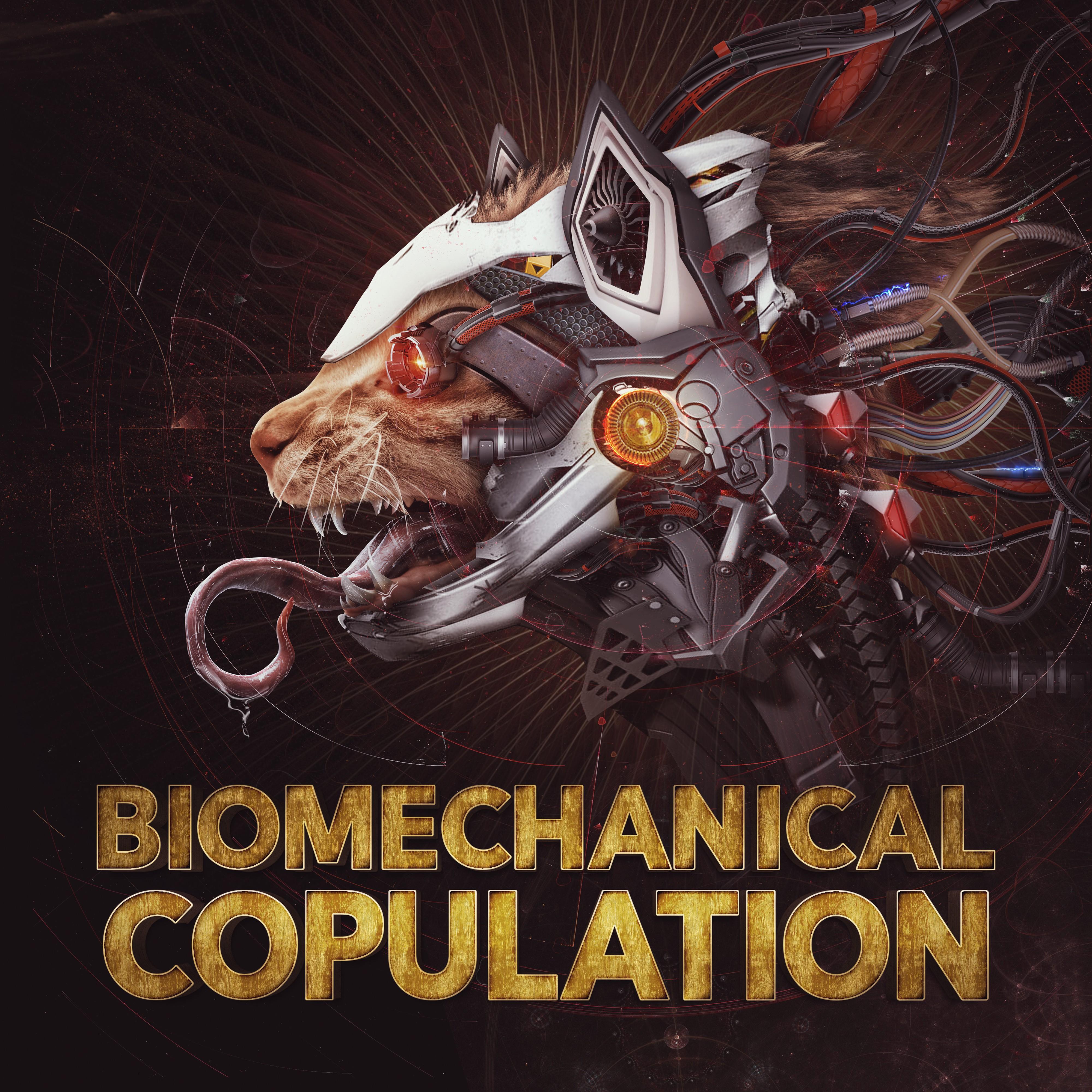 Ninja Kitty - Biomechanical Copulation