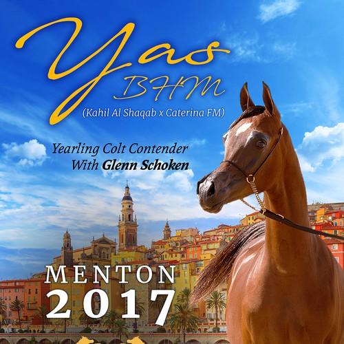 ARABIAN HORSE show design