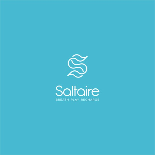 logo for a new Salt Therapy store will go on store front( real retail store in AuTexas) plus web
