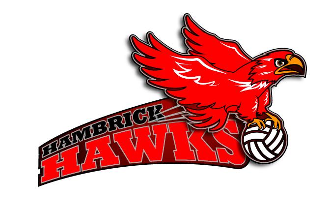logo for Hambrick Hawks