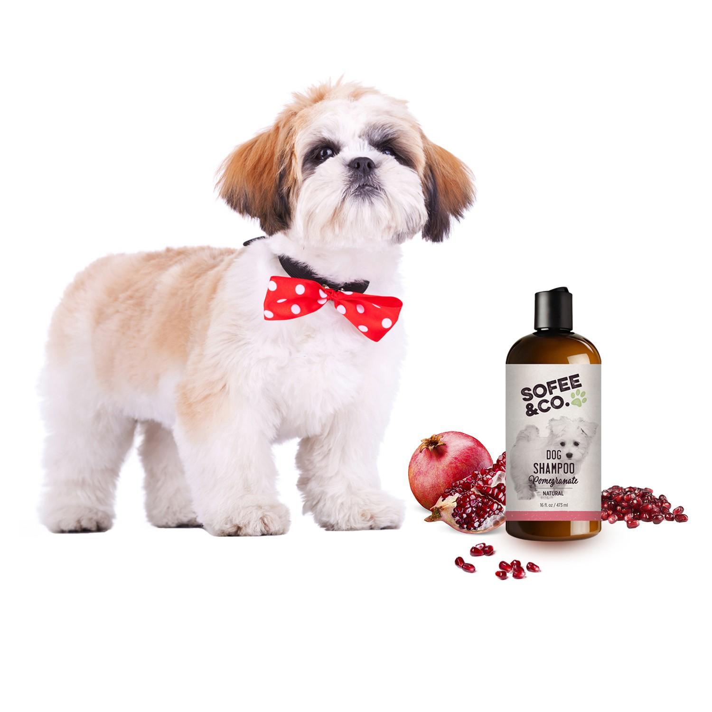 Pomegranate Dog Shampoo & Conditioner