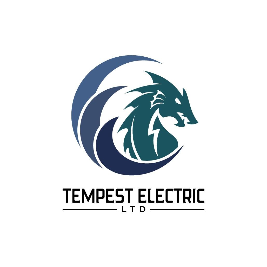 Tempest Electric needs a unique logo