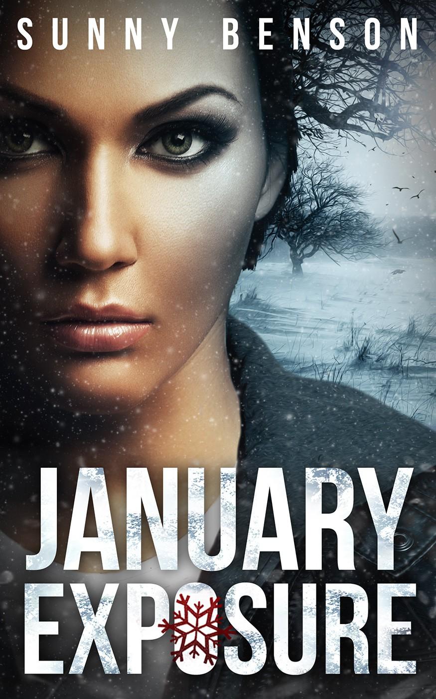 Book Cover for Mystery Novel