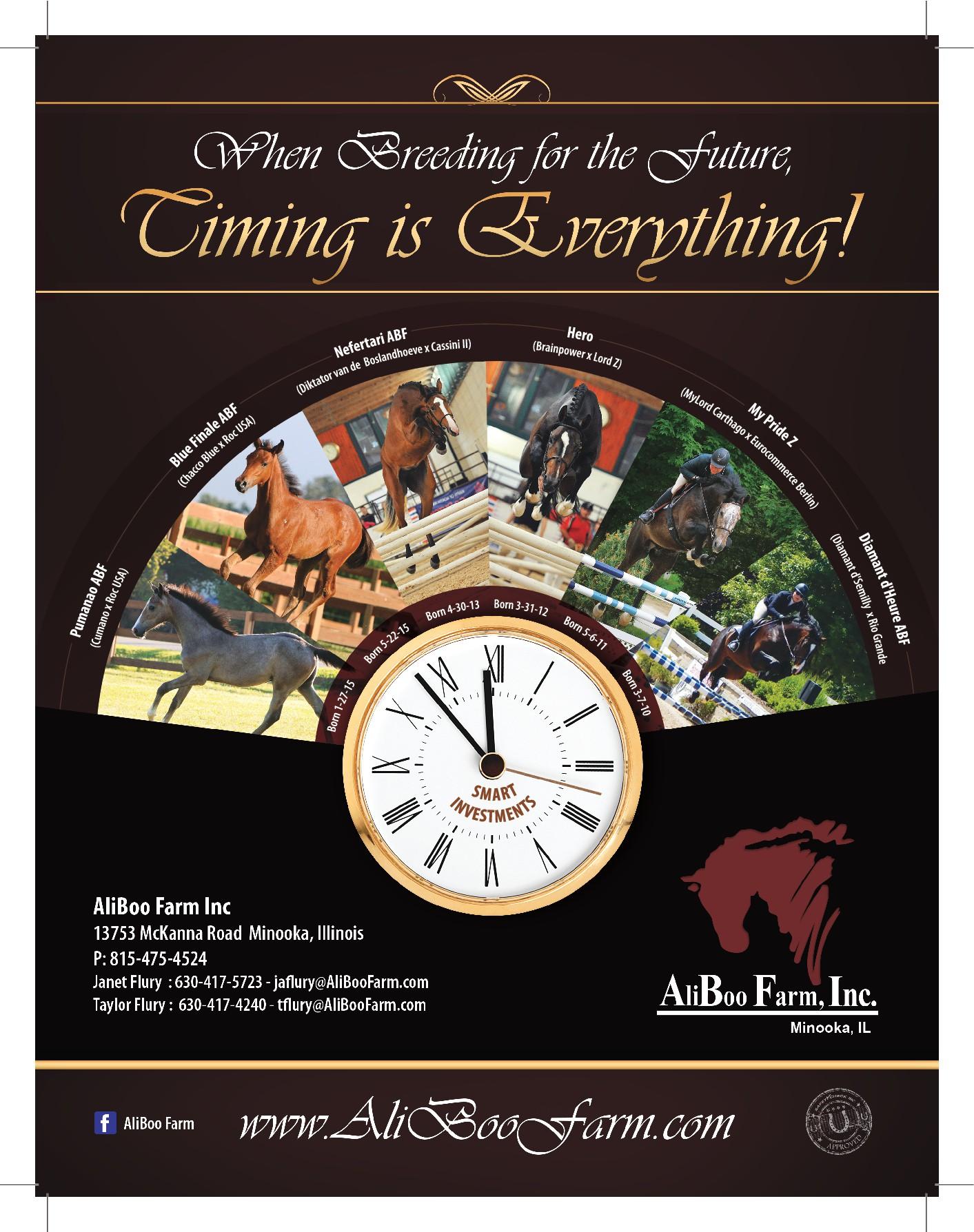 AliBoo Farm, Inc. - Equine Advertisement - Breeding Tomorrow's Champions Today