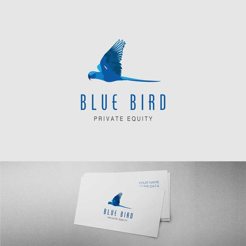 Logo concept for a boutique investment fund manager