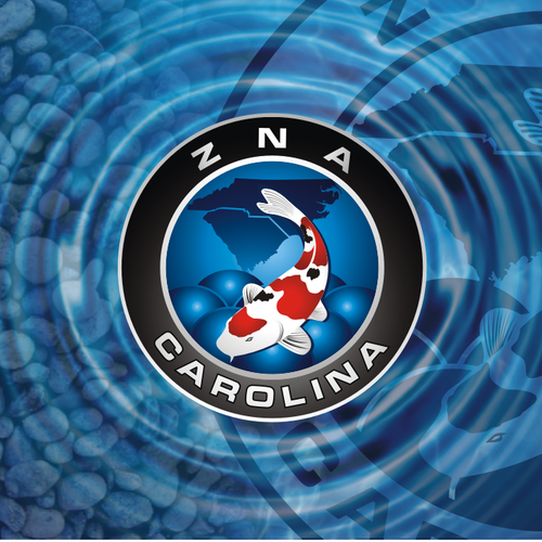 ZNA Carolina logo