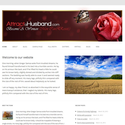 New banner ad wanted for www.AttractaHusband.com