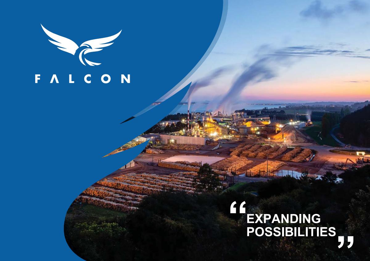 Design a Fancy Company Profile for Falcon
