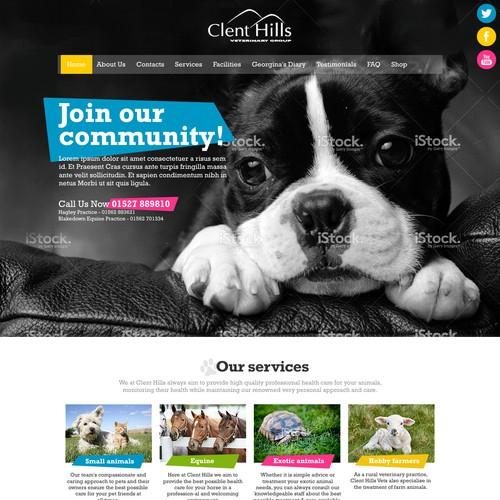 Webdesign concept for a veterinary group