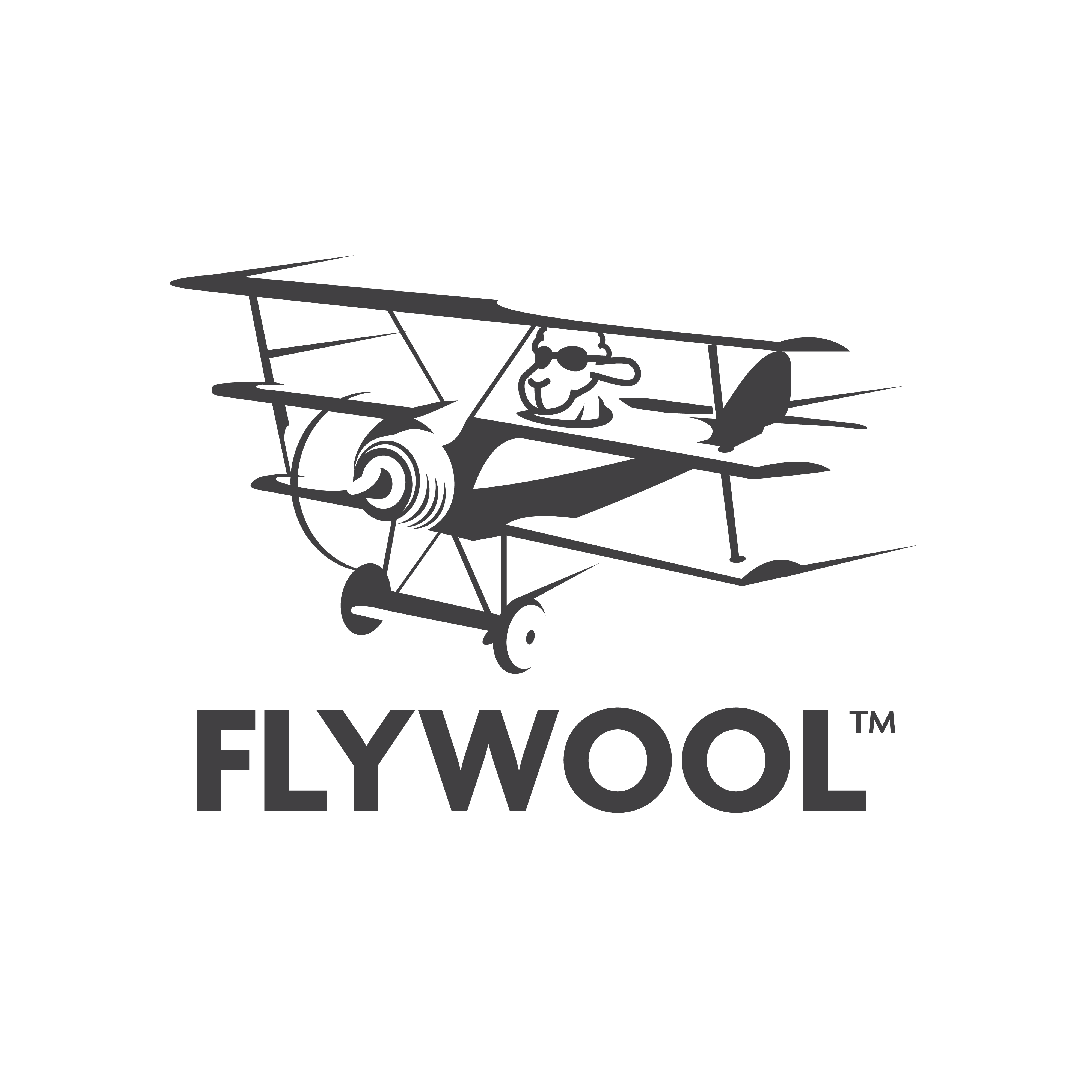 Fitting Logo for Flywool (a clothing company)