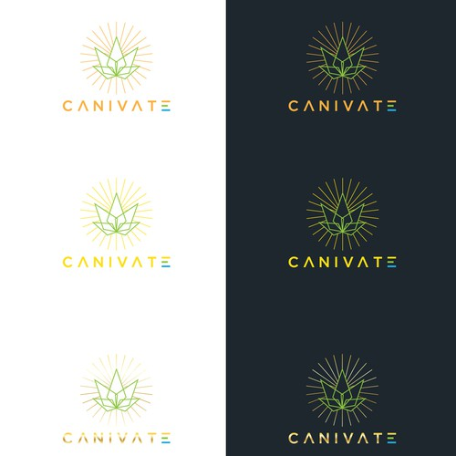 Winning design for Canivate