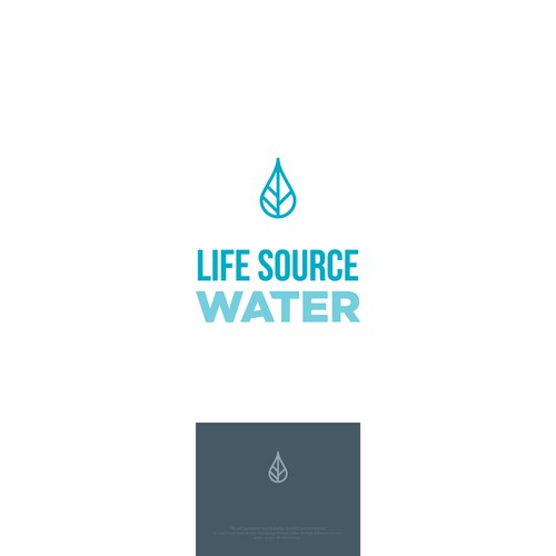 Minimalist logo for a water store