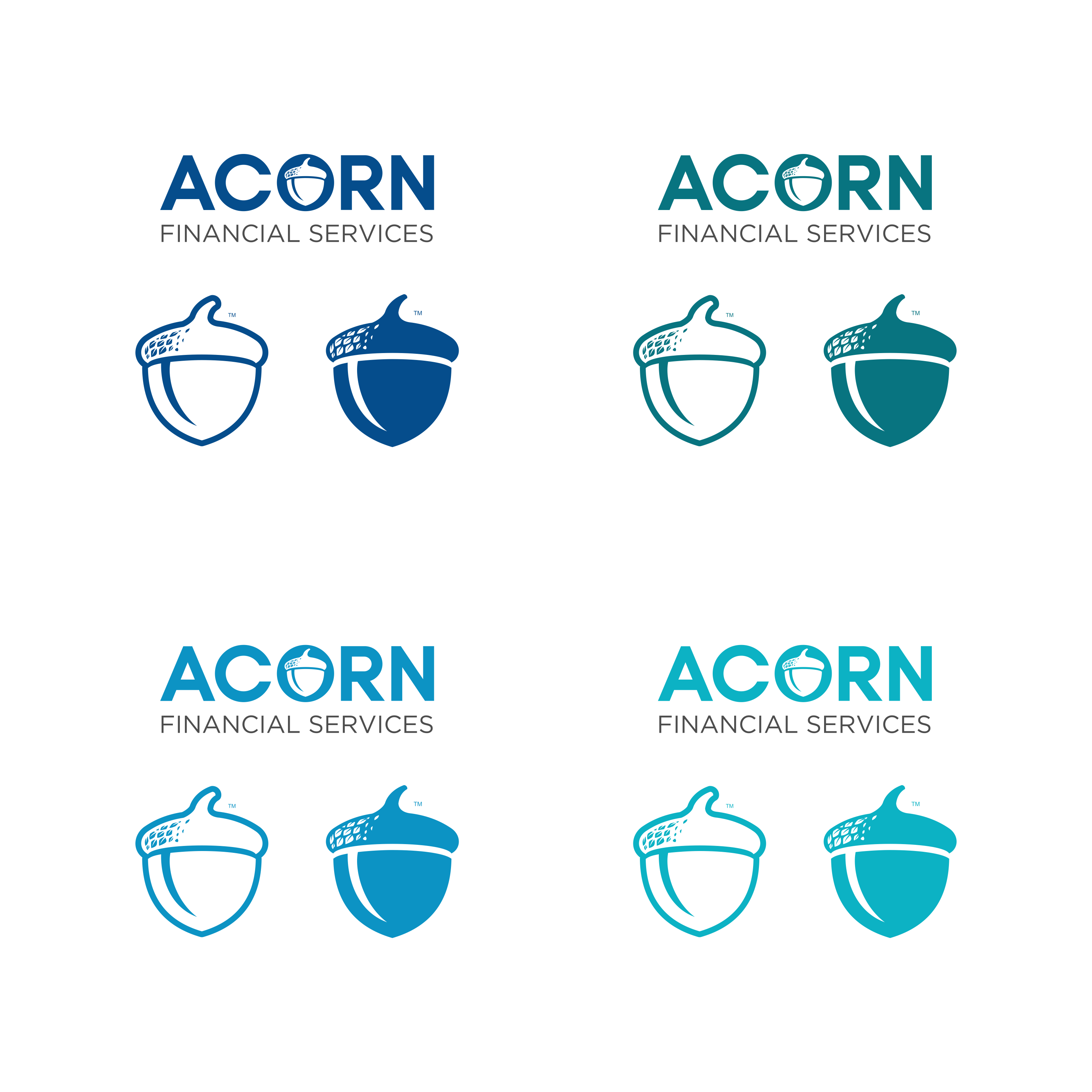 """Final Criteria: Acorn in """"O"""", Blue top line, grey bottom line. Provide acorn graphic separate from logo."""