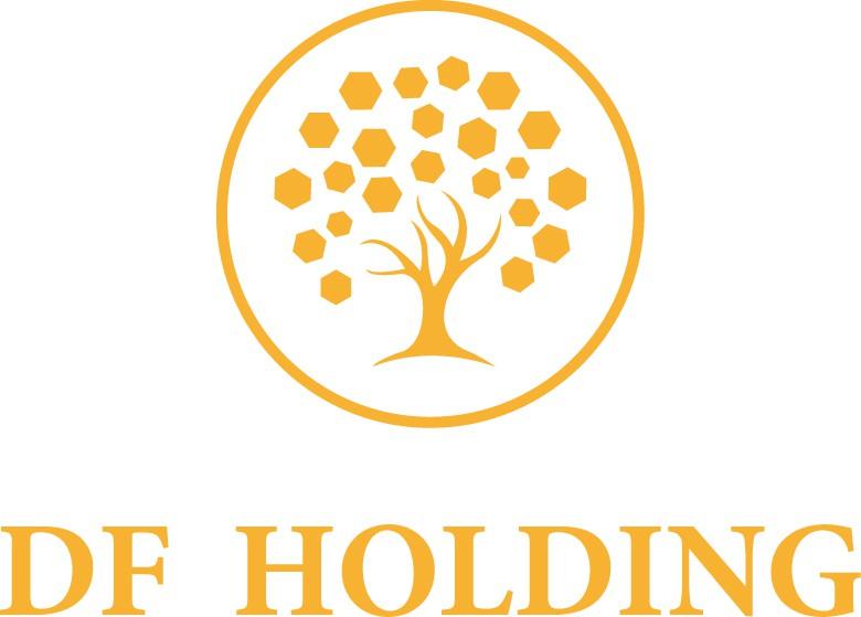 DF Holding - Logo
