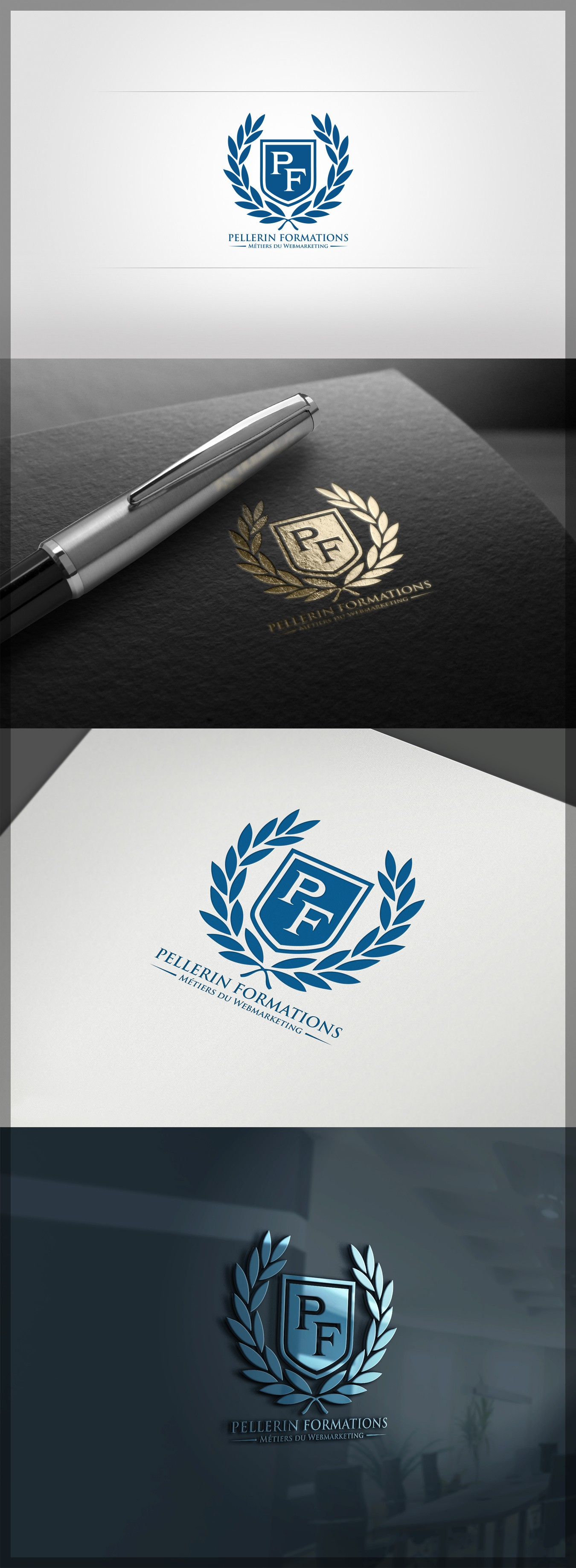 To create a logo for a training institute in webmarketing skills !