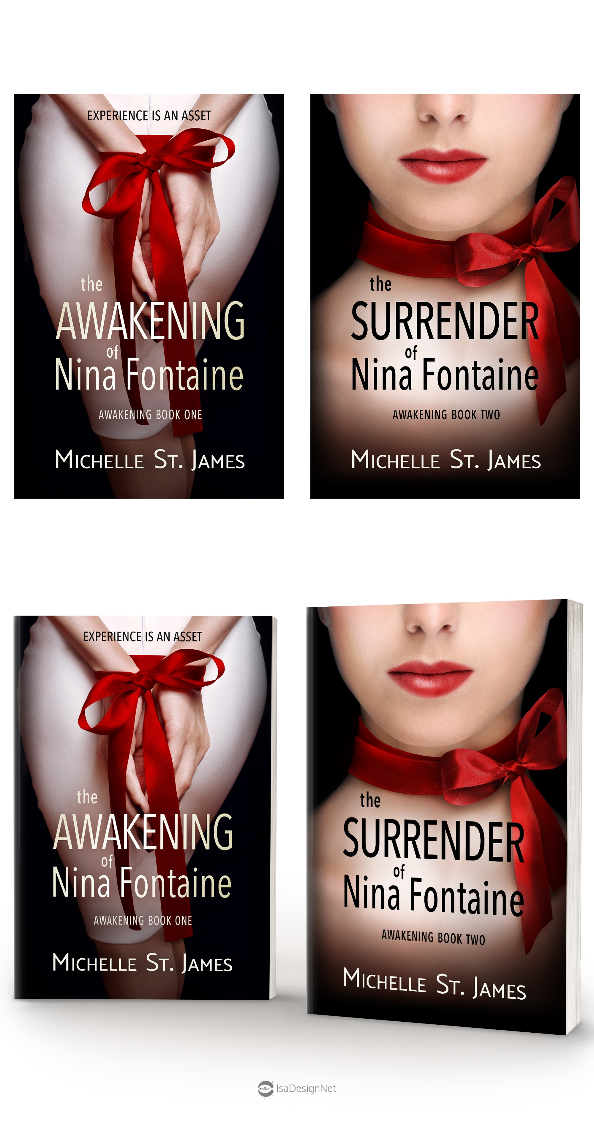 The Surrender of Nina Fontaine Book Cover