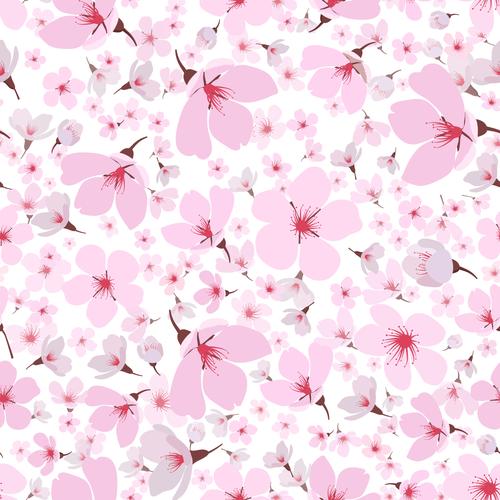 Pink spring sakura blossom