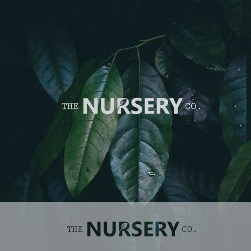 logo proposal for the nursery