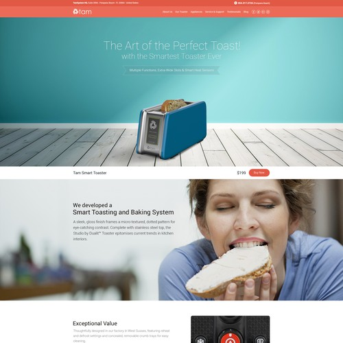 TAM Toasters Homepage Design