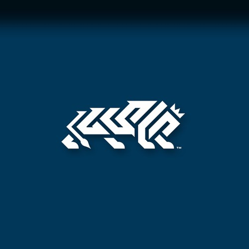 Bold &Simple Logo