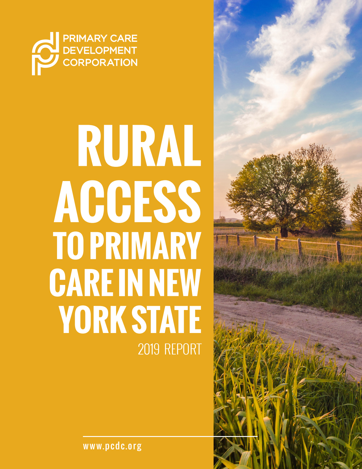 Rural Access Health report (20-25 pages)