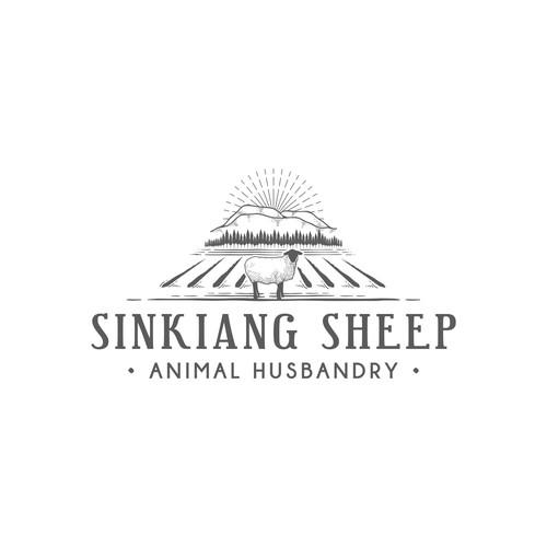 Sinkiang sheep