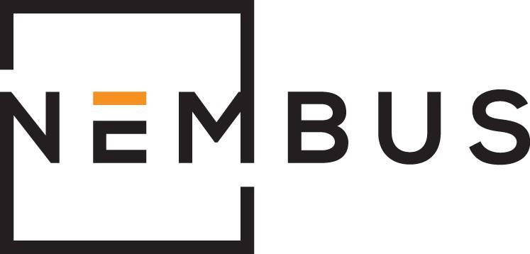 Create a representativ logo for our new consulting company