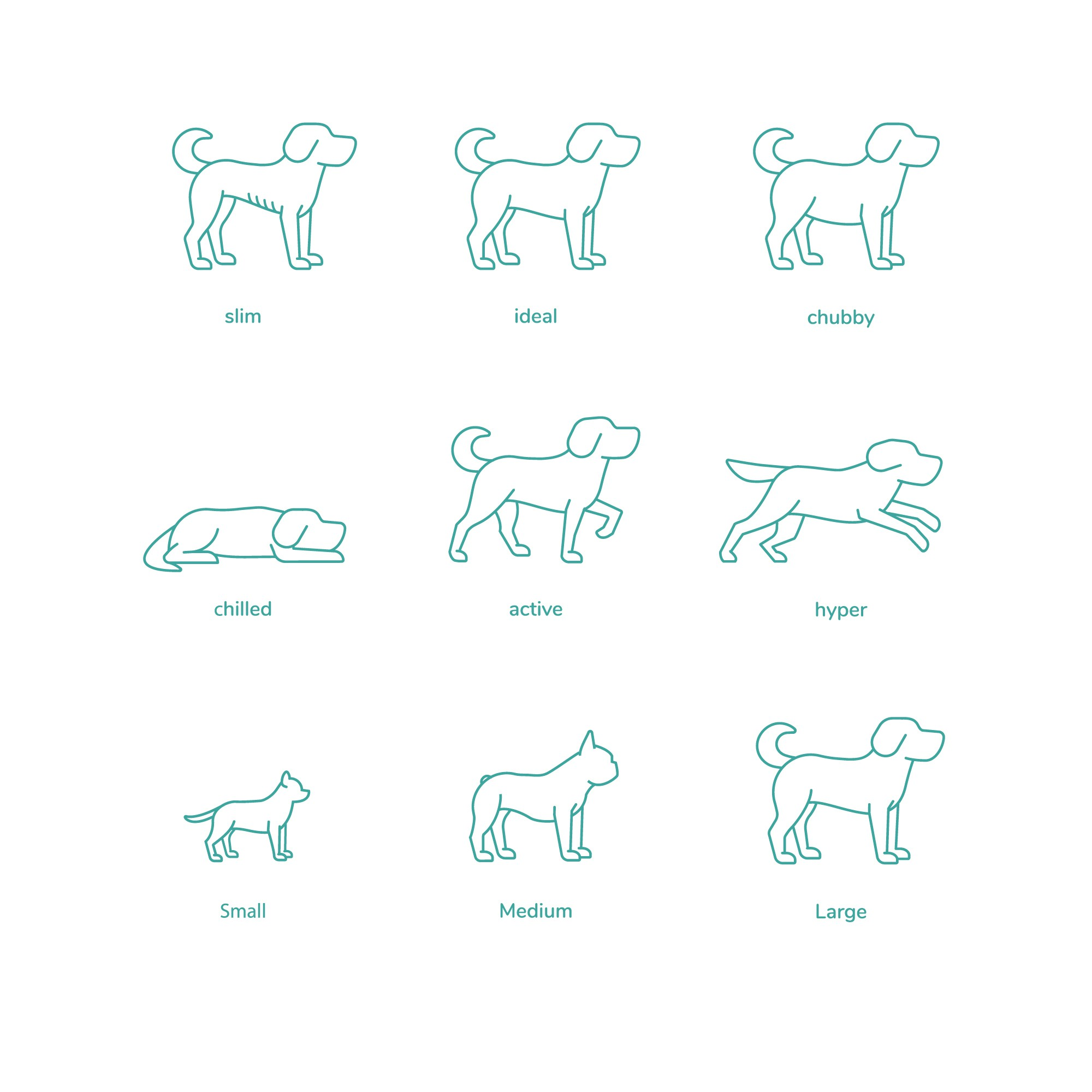 Illustration design for website
