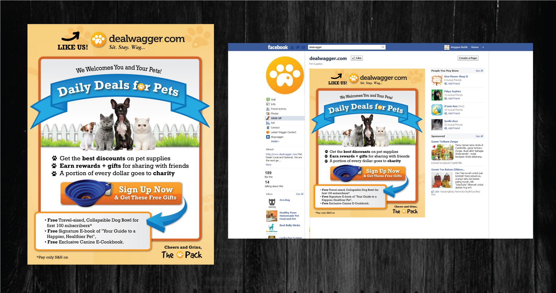 banner ad for DW Pet Supplies