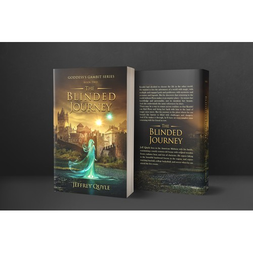 'The Blinded Journey' book cover