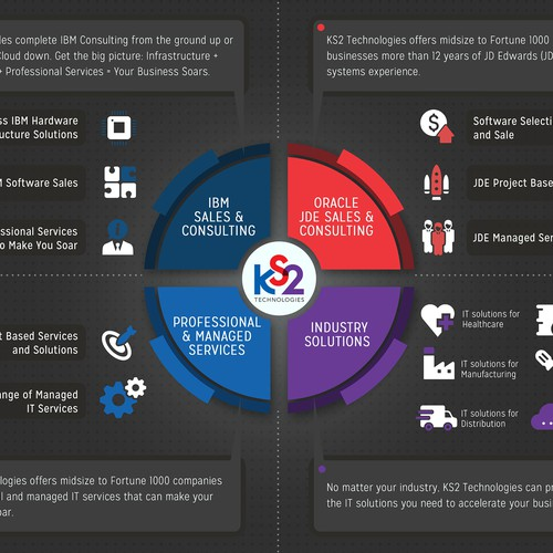 """What We Do"""" Infographic for IT Company"""