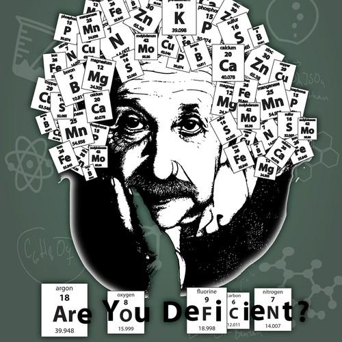 Einstein Nutrient Illustration