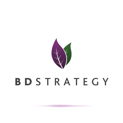 BD Strategy LLC needs a new icon or button design