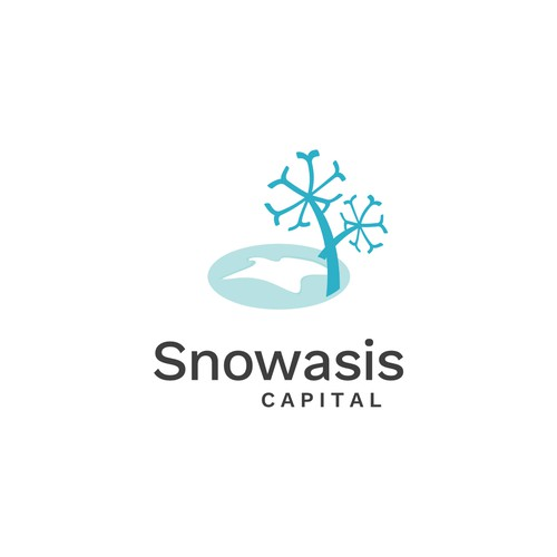 Abstract Logo for an Investment Company