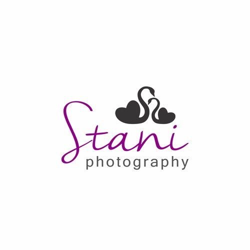 Artistic logo for Stani photography