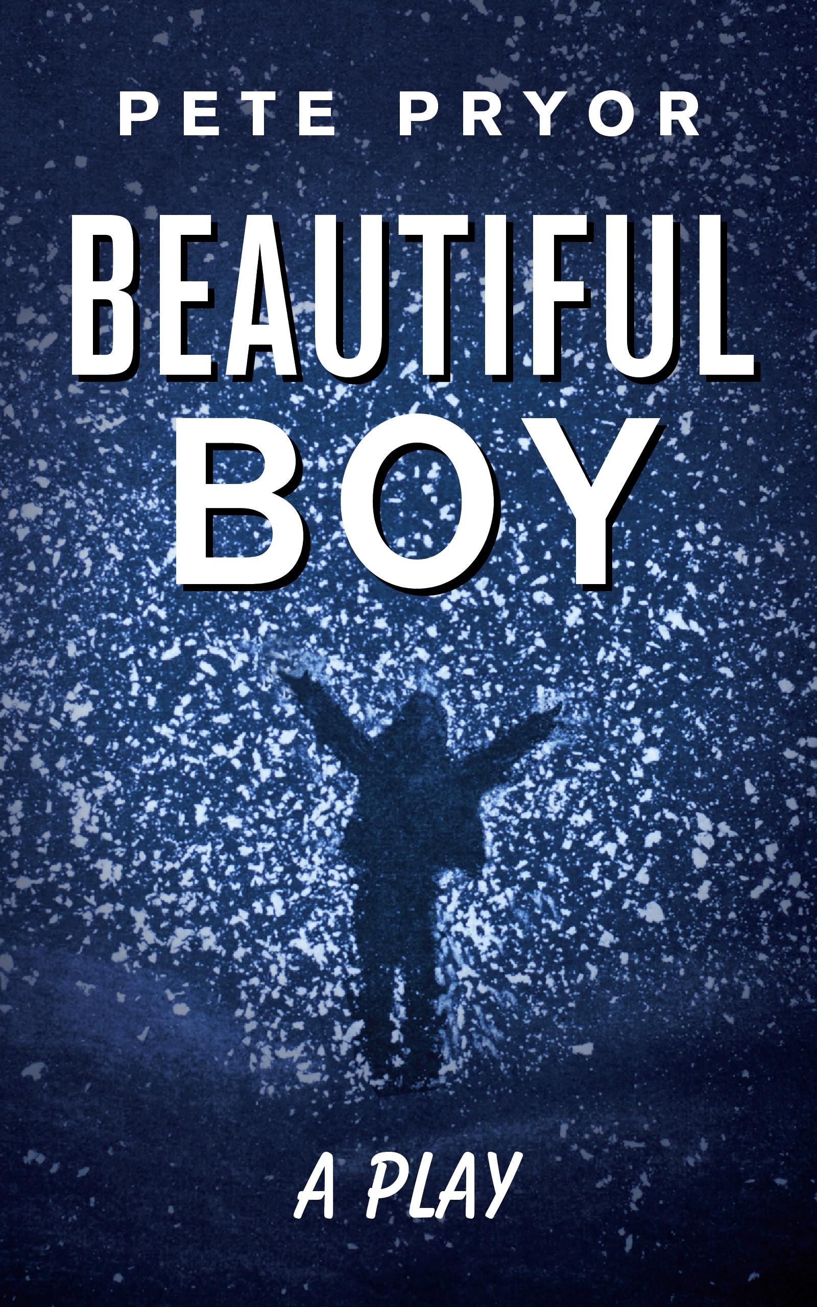 Beautiful Boy book cover.