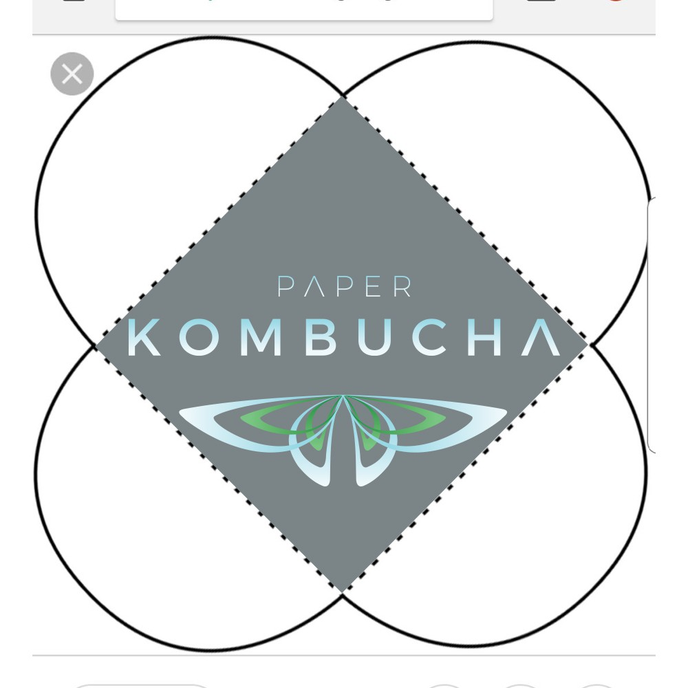 The Identity of Kombucha Rolling Papers- a product the world has never seen.