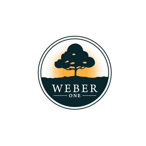 Weber One