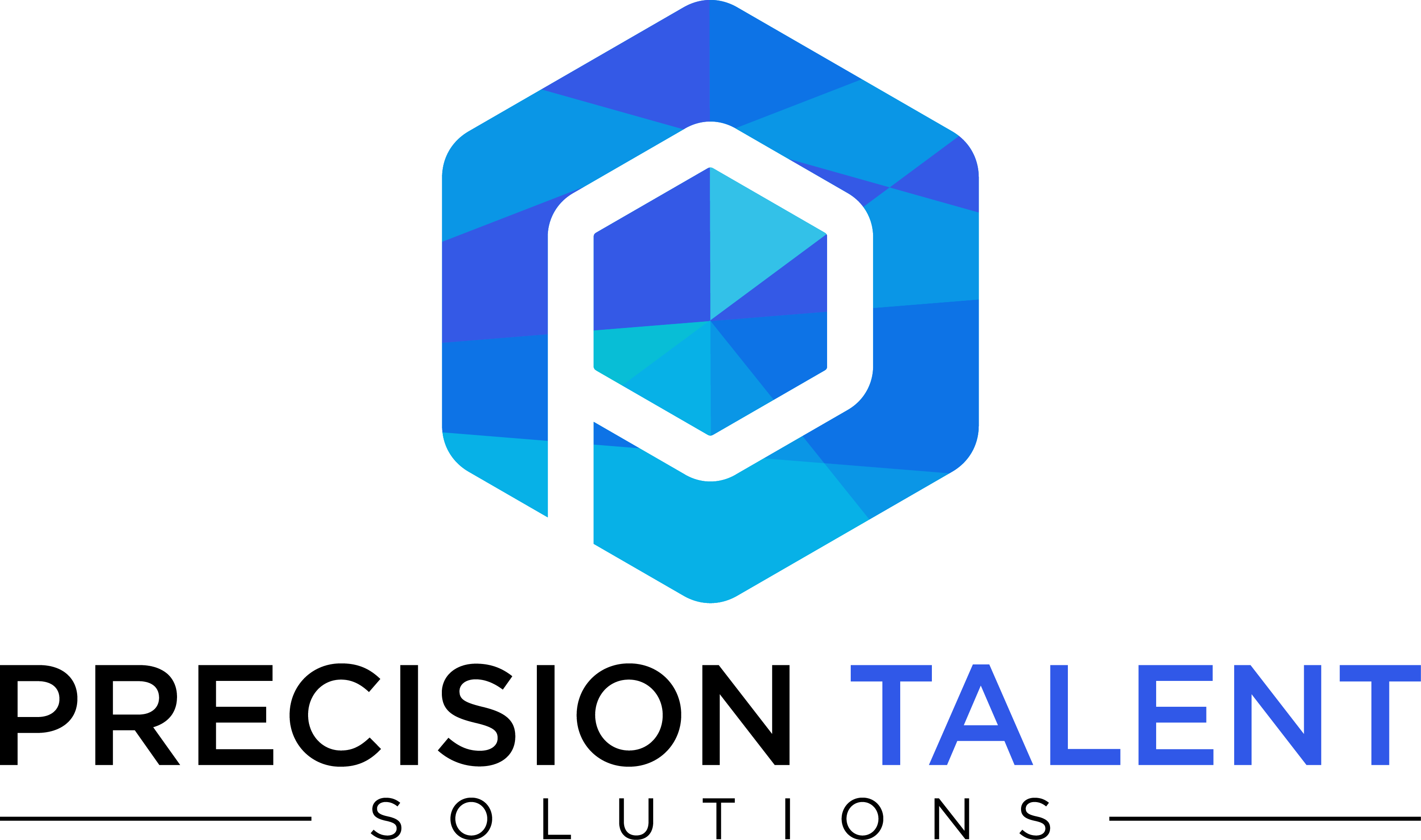 Precision Talent Solutions logo + website