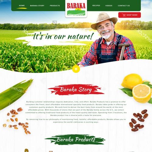 Website concept for Baraka Foods
