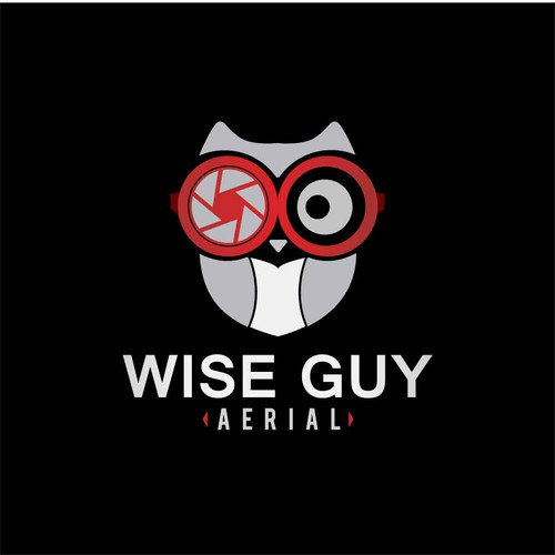 Wise Guy Aerial