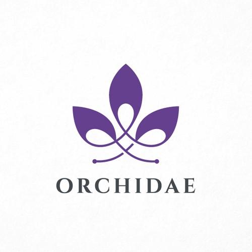 Modern Orchidae!