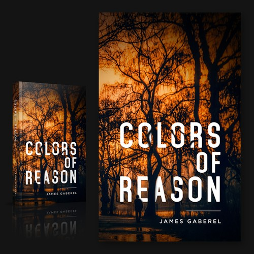 Color of Reason entry 3