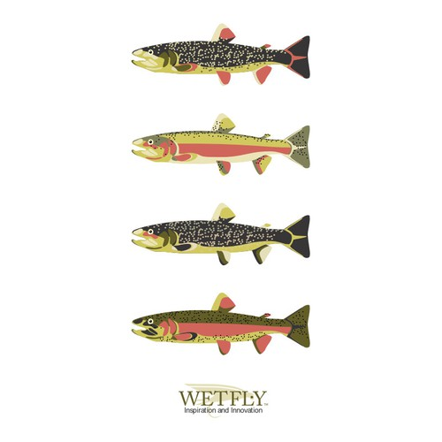 Create the next illustration for Wetfly