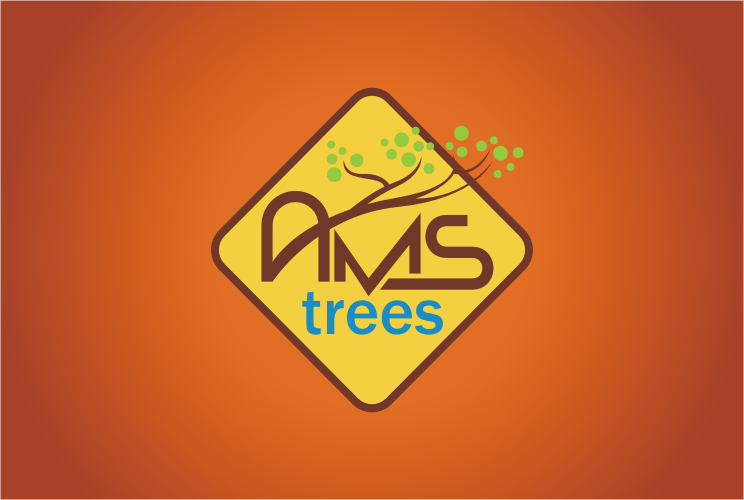 Help AMS Trees with a new logo
