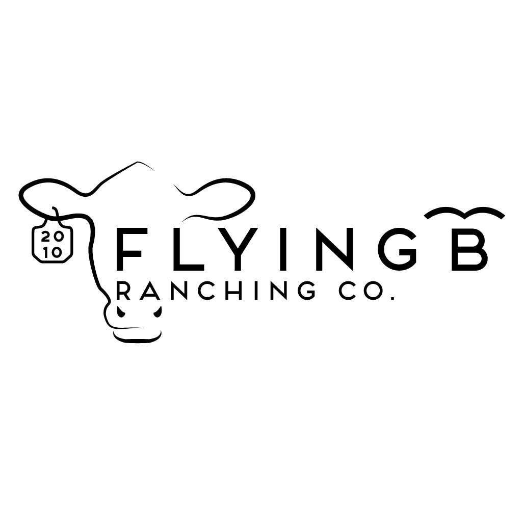 Design a simple & trendy new logo for Flying B Ranching Co.