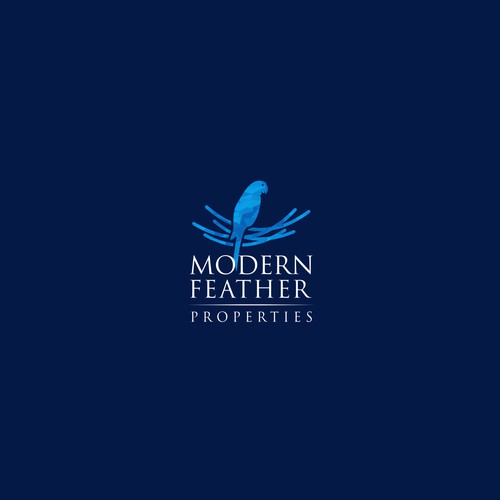 modern feather properties