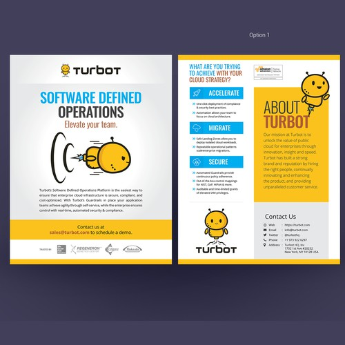 Powerful Handout Design Concept for Software Team