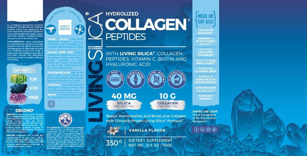 Dietary Supplement Brand is Designing a Revolutionary Collagen