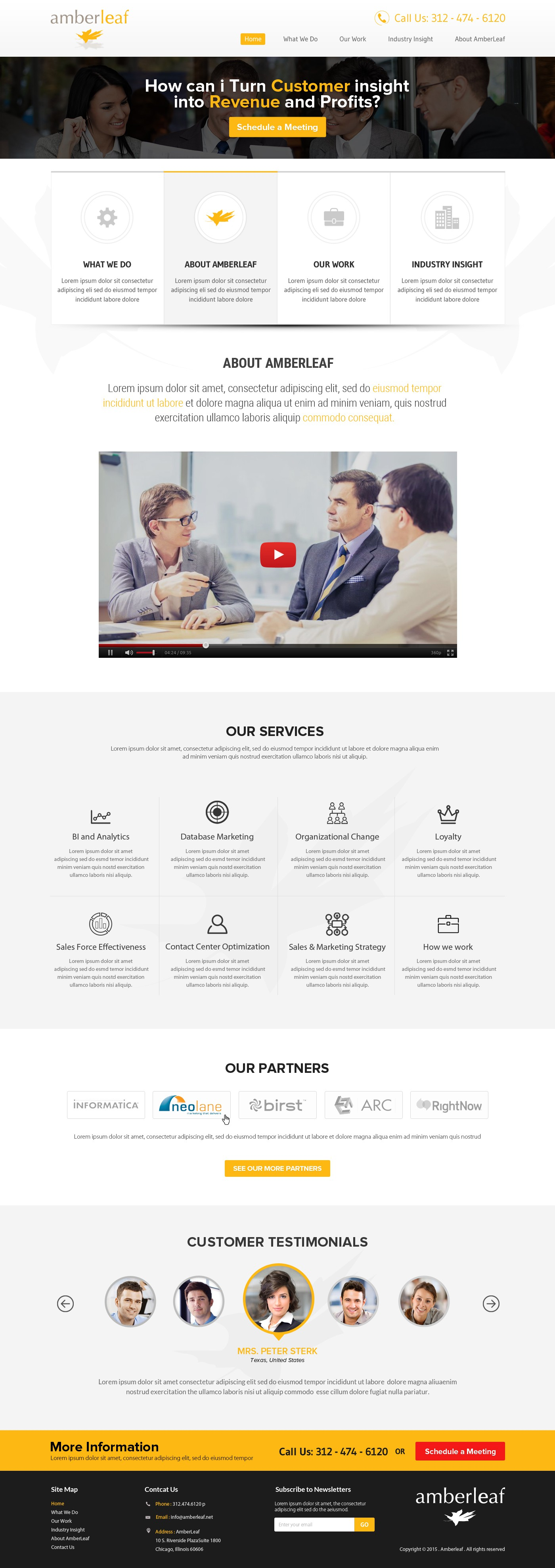 AmberLeaf Web Site (2 Pages) Redesign (no logo)